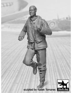 RAF Fighter Pilot 1940-1945 N°4  cat.n.: F32044 ,  BLACK DOG, 1:32