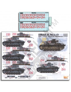 ECHELON FD ATX351028,1/35 Decals for Pz.Rgt. 6 Panzer IIIs - Operation Barbaross